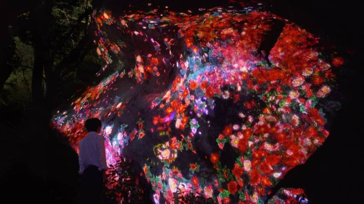 teamlab_blossoming_rocks